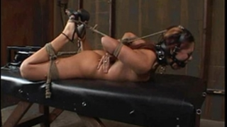 "Satine phoenix - consummate serf ""hogtied and fucked"" 02/25/2007"