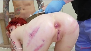 Anal birth - ava little gives birth to kittens out of her anal opening