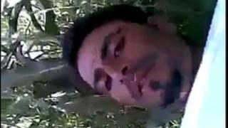Dasi sex in field